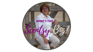 Leslie Long Scentsy Consultant